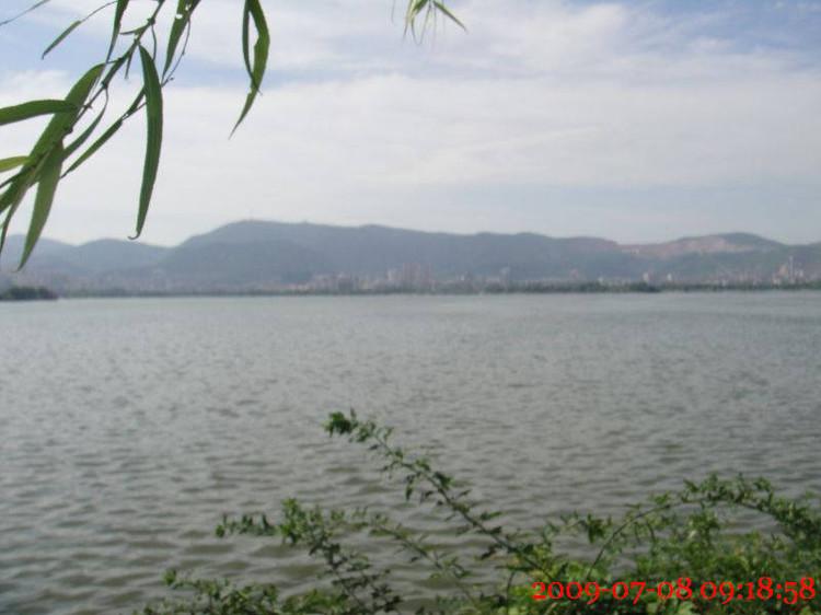 站在湖边远眺对岸的山丘,柳依依,摇摆镜头前